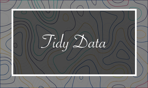 What is a Tidy Dataset